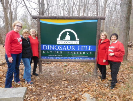 Rochester hills volunteer group